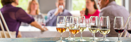 ThirtyFifty - Cardiff Wine Courses